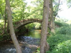 Pont Gorges de la Sianne